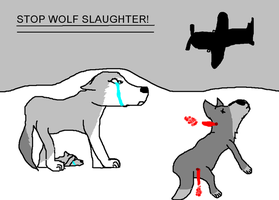 STOP THIS WOLF SLAUGHTER by gdwDOG-wolf99