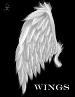 A Wing by YunaBevelle