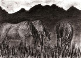 Charcoal - Horses by PatheticArtist