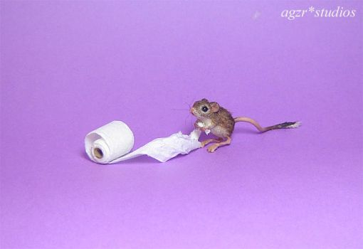 Jaculus 1:12 scale Cangure Rat Mouse handmade by AGZR-STUDIOS