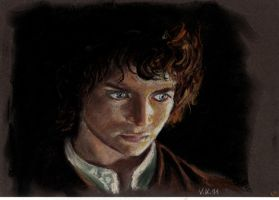 Frodo by verrykt