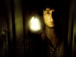 Lord of the Rings - Frodo by Sanguine-Gallery