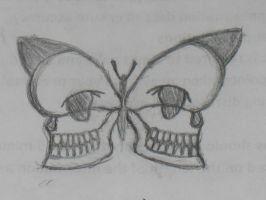Skull Butterfly by beverly546