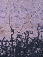 Road Cracks 03 by Limited-Vision-Stock