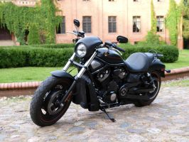 Harley-Davidson Night Rod Special 1 by touik