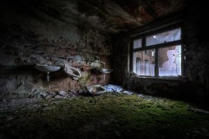 Welcome to the Jungle by AbandonedZone