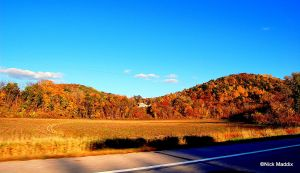 Countryside Fall Foliage Bliss by moonlightrose44