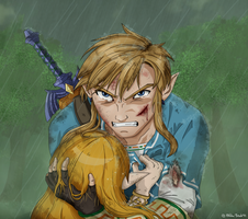 BotW: he'll pay for this! by zelda-Freak91