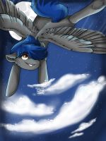 Night Flight by Grayfeather73