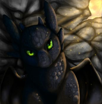 A cat or a dragon? Toothless by WesHound