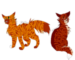 Sparkpaw and Alderpaw (Ref) by WarriorCat3042