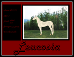 Leucosia-Ref by Secret-Z