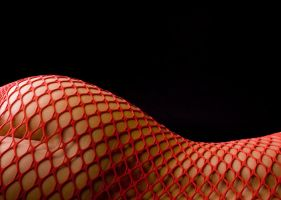 Red Net by wphotography