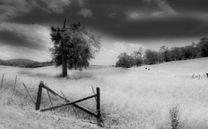 Black and White View by samkennedy