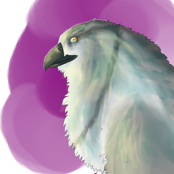 Gryphon by Etherinea