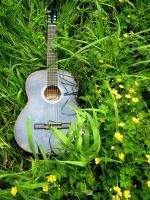 Guitar in the grass by Annas-Day-Dreams