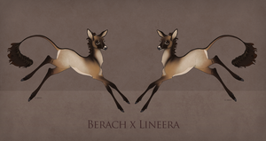 Berach x Lineera Foal Design by TigressDesign