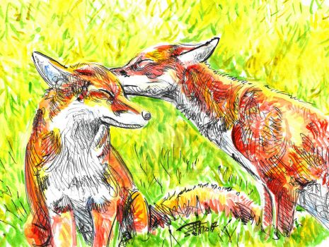 fox kiss by dessinateur777