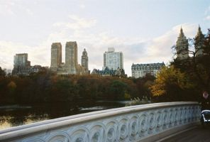 Central Park in the fall by jfahrlender