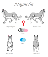 Magnolia Reference Sheet 2013 by TheDragonInTheCenter