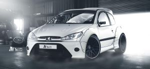Peugeot 206 by Lopi-42