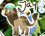 Jay by KalicoKitty