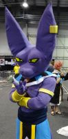 Beerus by lizardman22