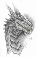 Graphite Dragon by SKrieck