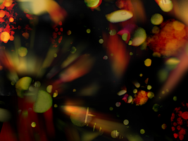 Texture 6: Carnival Lights by distorted-mirages