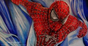 The Amazing Spider-Man by MonicaHooda