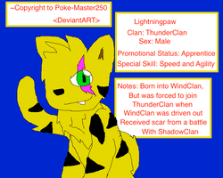 Lightningpaw- My Warrior OC by Poke-Master250