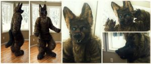 finished Realistic wolf SOLD by wolvescanlove