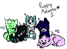 Puppy Adoptables 2 - Closed by KittKattAdoptables