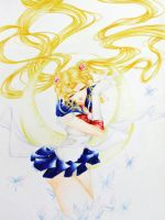_SAILOR MOON_ by phoenix4ever