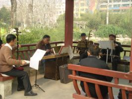 Classic instruments by Laura-in-china
