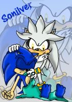 silver keep sonic warm by shadowlovesrouge