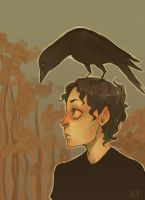 And the crows came to call by charlottevevers