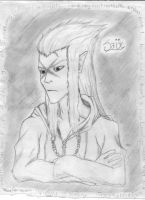 Saix by PandaCookie013