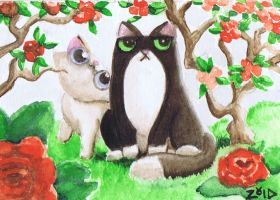 Funny cat fuss watercolour by KingZoidLord
