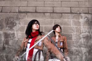 [Mikasa x Eren] Protect by Didi-hime