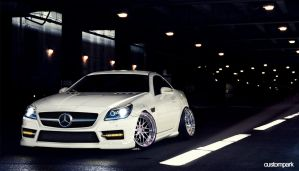 SLK Pearl White Stance by ARTriviant