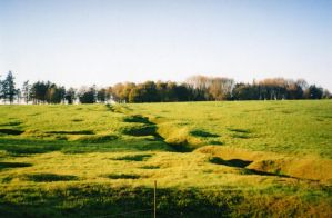Newfoundland Park Trenches by Pickled-witch
