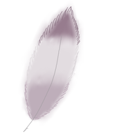 Free to use pigeon Feather! by Starlight573