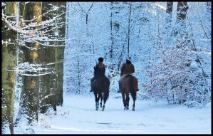 Riding in the winter forest by Esperimenti