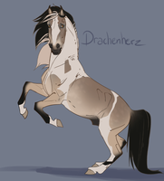Flash Auction- Drachenherz by abosz007