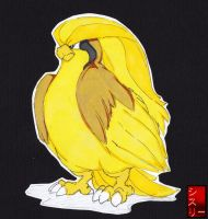 Pidgeott 018# by ShinypokemonART