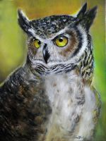 Owl-Original Oil painting.For sale on Etsy by katojade