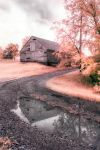 Puddle Reflection by swiftmoonphoto