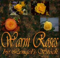 Warm Roses Pack by Lengels-Stock