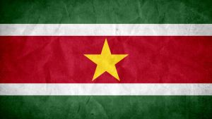 Suriname Grunge Flag by SyNDiKaTa-NP
